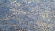 El passat diumenge 4 de setembre començava un greu incendi forestal en terme de Bolulla que va estar actiu i cremant amb virulència especialment durant el dilluns i el dimarts,...
