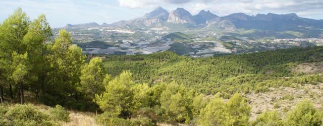 PAI ANIBITS-MARGEQUIVIR – CALLOSA D'EN SARRIÀ El PAI preveu la construcció de: Una urbanització d'1.800.000 metres quadrats. 2175 xalets i 50 viles. Dos camps de golf de 600.000 metres quadrats....