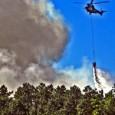 La consellera d'Infraestructures, Territori i Medi Ambient vol permetre la construcció en sòl afectat per incendis forestals. Evitem-ho! El Govern Valencià pretén modificar la Llei 3/1993 forestal de la Comunitat...